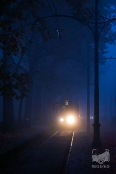 40 - Il tram 9 avanza tra la nebbia del mattino