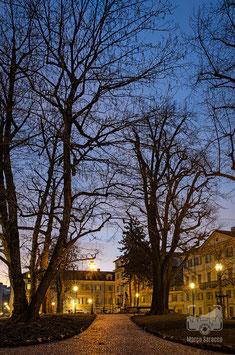 07 - Il Giardino Cavour alle prime luci dell'alba