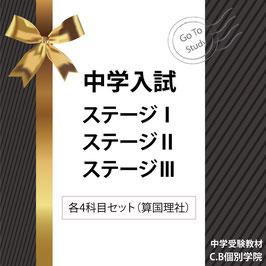 中学入試専用教材(4科目セット算国理社)