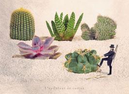 CP YP - L'épilateur de cactus