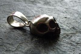 """"""" First Skull"""""""