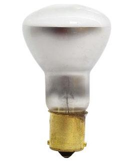 Multi Purpose Light Bulb 2 pcs