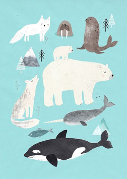 Postkarte Tiere aus dem Eis