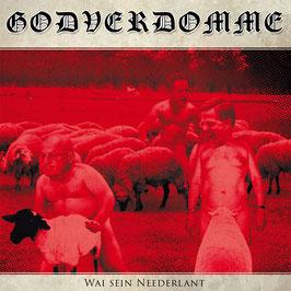 Godverdomme (Tim Steinfort)- Wai sein Neederlant CD