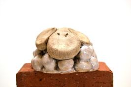 Schaf groß