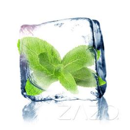 Cool Mint E-Liquid 10ml von ZAZO - Made in Germany