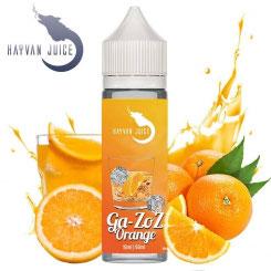 GA-ZOZ ORANGE Aroma 13ml - Hayvan Juice