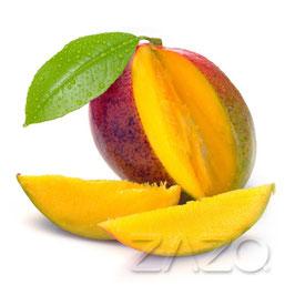 Mango E-Liquid 10ml von ZAZO - Made in Germany