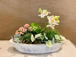 Gefäss bepflanzt für innen mit Orchidee rosa