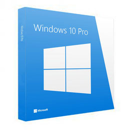Windows 10 Professional ESD