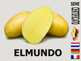 Elmundo 45/55