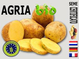 Agria BIOLOGICA 35/55