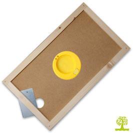 Apiscampo per arnietta da 6-telaini con disco in plastica
