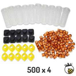 Gioco delle Regine BeePro kit completo - 500 pezzi