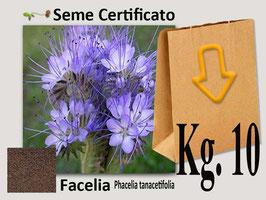 Facelia (Phacelia Tanacetifolia) kg.10
