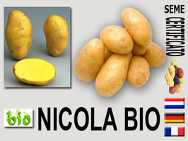 NICOLA BIO  35/50