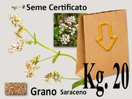 Grano Saraceno in seme kg.20
