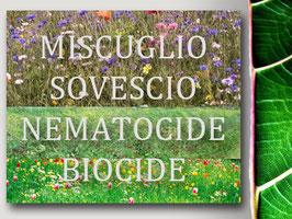Miscuglio Sovescio nematocide-biocide -BIOFUMIGAZIONE Naturale-