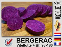 Bergerac (viola) calibro 40/45