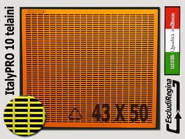 Escludi Regina Plastica ItalyPro 43x50 Orange-arnia 10