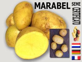Marabel