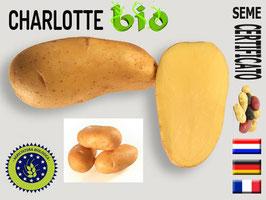 Charlotte BIOLOGICA