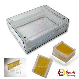 Favetto con scatola trasparente Quarti