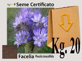 Facelia (Phacelia Tanacetifolia) kg.20