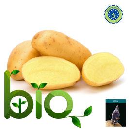Agria BIOLOGICA 55/65