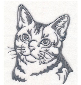 ★ Impfpasshülle ★ CAT AmericanShorthair ★