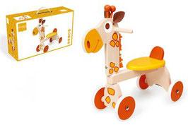 4-Wheel Walker