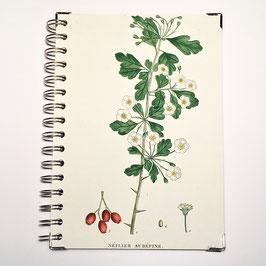 Notizbuch, Serie Pflanzenlithographien