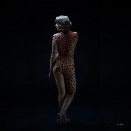 Gepard, weiblich