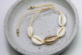 Armektte goldene Muschel