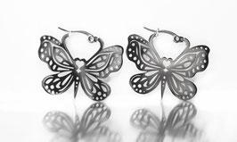Creole Schmetterling