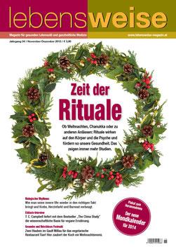 Ausgabe November/Dezember 2013