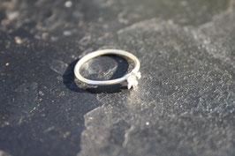 Nebelpflanzen Ring