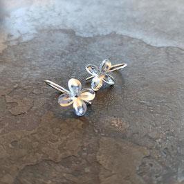 NEU Flieder Blüten Ohrhänger