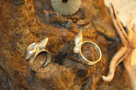 Muschel Ring