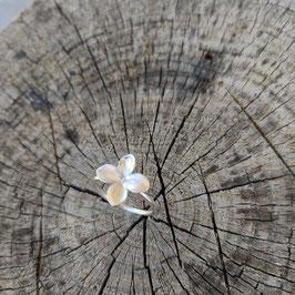 NEU Flieder Blüten Ring