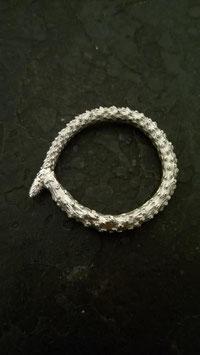 Zwergpfeffer Ring  1