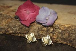 Hortensien Ohrhänger mit kleiner Blüte Gold