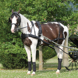 Harnais cuir cheval de trait