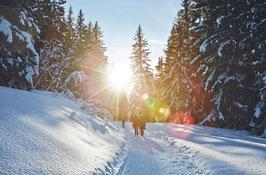 forfait swiss village club hiver!