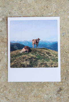 Polaroidkarte | Gipfelchiller
