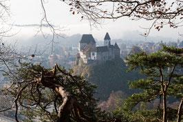 "Bild ""Schloss Burgdorf 1"""