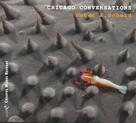 CHICAGO CONVERSATIONS (MP3)