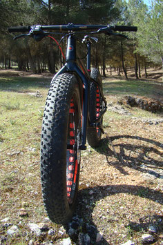 FAT BIKE BAGGERBIKE BAGGERONE