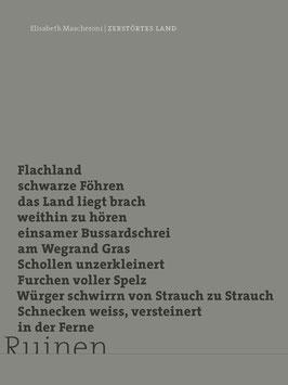 Elisabeth Mascheroni ‹Zerstörtes Land›