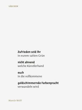 Mareile Wolff ‹Lärchen›